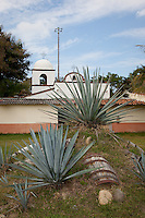 &quot;Buried Barrel&quot;- This buried barrel and agave plants, used in the making of tequila, were photographed near Puerto Vallarta, Mexico.