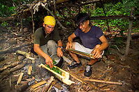 Kiulu,  Sabah, Borneo, Malaysia, March 2006. Jungle Survival and jungle trekking tours in the secondary rain forest of Kiulu offer a good opportunity to master the skills of jungle survival and learn about eatable plants, bamboo tools and the use of the Parang.  Photo by Frits Meyst/Adventure4ever.com