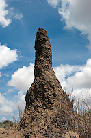 A termite mound in Namibia