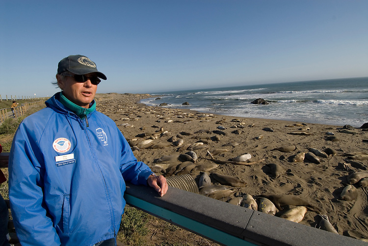 California, San Luis Obispo County:  Elephant Seals gather at Piedras Blancas beach. Blue-jacketed docents of Friends of the Elephant Seals explain seals to visitors..Photo caluis194-70995..Photo copyright Lee Foster, www.fostertravel.com, 510-549-2202, lee@fostertravel.com