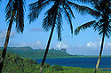 Sokehs Rock, lagoon and palm trees from the Village Hotel; Pohnpei, Micronesia.