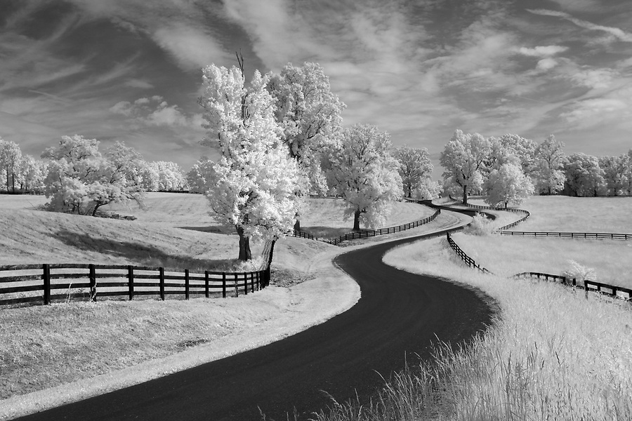 A long windy road photographed in infrared in southern Albemarle County, Va. Photo/Andrew Shurtleff