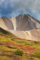 Autumn colors over the tundra in Sable Pass, Denali National Park, interior, Alaska.