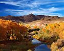 Fall Colors - Truckee River Still