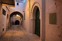 Entrance to the Ghailan Mosque on the right, with green studwork doors within a horseshoe arch recess with fluted edge, on a narrow street in the medina or old town of Tetouan, on the slopes of Jbel Dersa in the Rif Mountains of Northern Morocco. Tetouan was of particular importance in the Islamic period from the 8th century, when it served as the main point of contact between Morocco and Andalusia. After the Reconquest, the town was rebuilt by Andalusian refugees who had been expelled by the Spanish. The medina of Tetouan dates to the 16th century and was declared a UNESCO World Heritage Site in 1997. Picture by Manuel Cohen