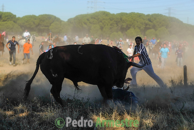 A mounted horseman are seen during the Bull of the Vega in Tordesillas, near Valladolid, 13 September 2005. The festival is one of the oldest in Spain with roots dating back to the fifteenth century. The bull has to be enticed across the river from the village to the plain 'Vega' before it can be killed to honour the 'Virgen de la Pena'. (c) Pedro ARMESTRE