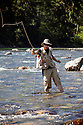 WA09132-00...WASHINGTON - Fly fishing on the Middle Fork of the Snoqualme River near North Bend. (MR# J9)