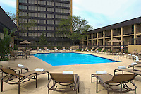 Outdoor swimming pool and lawn chaisse at a Sheraton hotel.