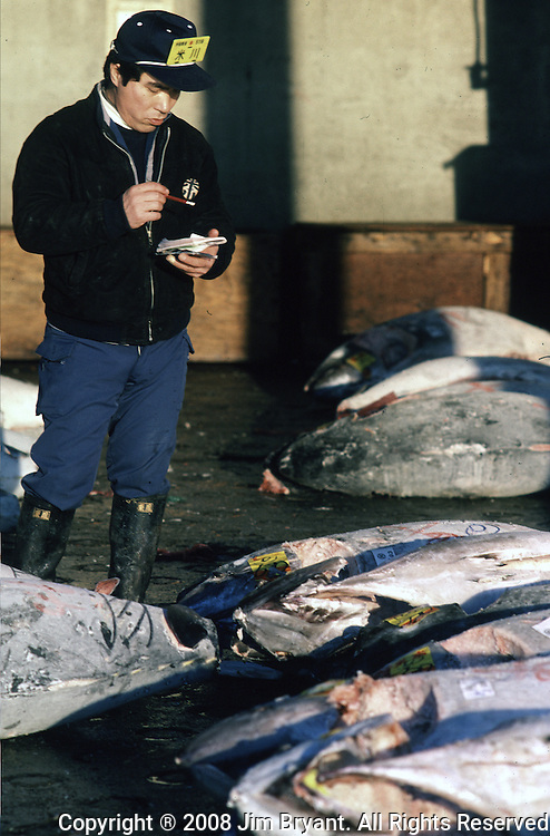 Potential buyers inspect tuna for the color, firmness, fattiness, flakiness and freshness of the catch.The day begins early at the Tsukiji Fish Market in Tokyo, Japan where a skilled army of licensed middlemen and buyers purchase tuna and a variety of seafood for sale in the market's 1,400 shops.  Because of the Japanese passion for freshness, all the fish sold will be consumed by Tokyo residents the following day. (Jim Bryant Photo).....