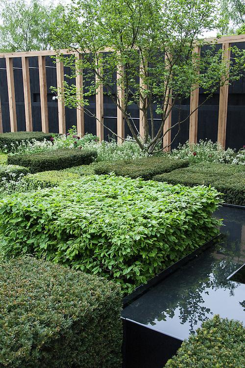 The Telegraph Garden,  designed by Christopher Bradley-Hole, Gold medal winner, RHS Chelsea Flower Show 2013.