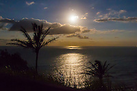The moonrise and its reflection in the ocean between two palm trees over Pololu Valley, North Kohala, Big Island.