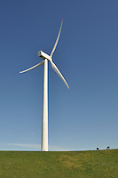Wind Farm