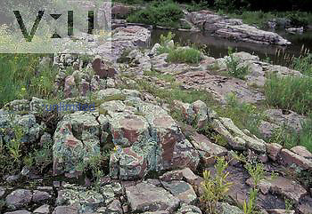 Lichen-covered Sioux Quartzite metamorphic rocks, South Dakota, USA.