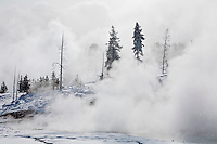 Mud Volcano thermal area in Yellowstone National Park during winter