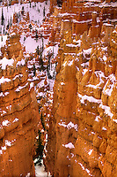 730750151 winter morning light on the hoodoos in wall street below sunset point in bryce canyon national park utah united states