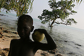 A young island holds a green, and unripe coconut, at the waters edge, behind him a tree already being submerged, on Puil Island, Carteret Atoll, Papua New Guinea, on Sunday, Dec. 10, 2006.