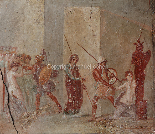 Fresco of Ajax dragging Cassandra from the Palladium before the eyes of Priam, with Helen and Menelaus to the left and Priam in the centre, scene from Homer's Iliad, from the North wall of the East ala of the Casa del Menandro, or House of Menander, Pompeii, Italy. This room is painted in the Fourth Style of Roman wall painting, c. 60–79 AD, a complex and Baroque style. Also known as the House of the Silverware, this is one of the largest and most elegant houses in Pompeii, belonging to the Poppei family and built in the 3rd century BC. Pompeii is a Roman town which was destroyed and buried under 4-6 m of volcanic ash in the eruption of Mount Vesuvius in 79 AD. Buildings and artefacts were preserved in the ash and have been excavated and restored. Pompeii is listed as a UNESCO World Heritage Site. Picture by Manuel Cohen