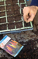 Seed Starting Plants & Bulb Planting Garden Stock Images