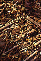 Photo of warm toned drifwood in small pieces on a beach.