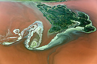 Aerial image of algae bloom, Lake Bogoria, Kenya