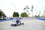 Clifford Kraus drives his golf cart as Sasha, his 15-year-old chow walks alongside a street in Sun City, Arizona December 9, 2010. Due to the heat in the summer, Clifford shaves Sasha like a lion in the summer, he said. Clifford, 75, moved to sun City 25 years ago from Indiana. .2010 marks the 50th anniversary of Sun City, America's first retirement city that remains the largest today with more than 40,000 residents 55 and older.