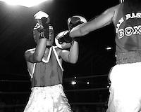 Roma  Luglio 1997.Incontro  di boxe dilettanti alla Festa di Liberazione.Zamponi (San Basilio) vs Gatta