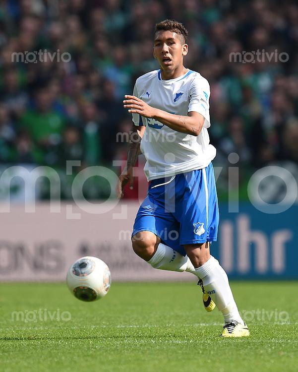 FUSSBALL   1. BUNDESLIGA   SAISON 2013/2014   31. SPIELTAG SV Werder Bremen - 1899 Hoffenheim                   19.04.2014 Roberto Firmino (1899 Hoffenheim) am Ball