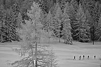 Ski tour in Arpy, Italy
