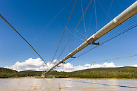 The Trans Alaska Pipeline crosses the Tanana River via a suspension bridge 1,299 ft. in length, which makes it the second longest pipeline bridge in Alaska.