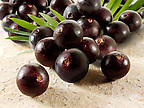 Stock pictures &amp; images of the acai berries the super fruit anti oxident from the Amazon. The acai berry has been associated with helping weight loss.