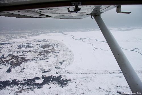 Ameland - Oost - Oerd - Nieuwlandsreid - Zoute Weide