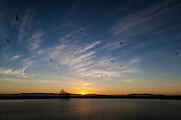 Gulls fly by as the sun slips behind the Santa Cruz Mountains across San Francisco Bay.