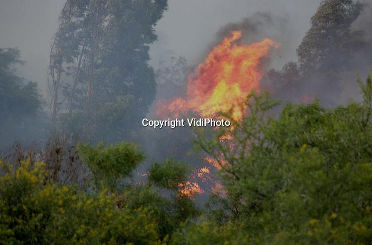 Foto: VidiPhoto..ROBERTSON - In het wijngebied in de West-Kaap in Zuid-Afrika woedt op dit moment een grote bosbrand. Brandweerkorpsen uit de wijde omtrek van Robertson bestrijden het vuur met onder meer blushelicopters. Zo'n 5000 ha. bosgebied is inmidddels verwoest. Door de harde wind breidt het vuur zich echter steeds meer uit. Wijnboeren in het belangrijkste wijngebied van Zuid-Afrika vrezen dat het vuur overslaat naar hun wijngaarden.