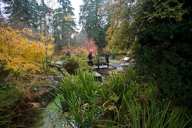 Bellevue Washington State Bellevue Botanical Garden Bellevue Washington State Joel