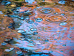 Abstract view of bubbles in an eddy and fall color reflections in Duck Brook in Acadia National Park, Maine, USA