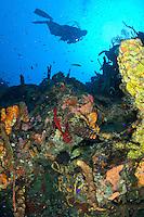 Underwater diver scenic at Vertigo in Annaly Bay.St. Croix.US Virgin Islands