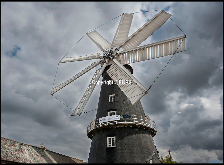 BNPS.co.uk (01202 558833)<br /> Pic: PhilYeomans/BNPS<br /> <br /> Flour power.<br /> <br /> Octo-mill turns again...'Ferrari of windmills' is restored.<br /> <br /> Britains only eight sailed windmill is working once again after a &pound;150,000 restoration to repair its unique sails.<br /> <br /> Heckington Mill has ground wheat to make flour since 1830 but it was closed down when two of its enormous wooden sails were found to have rotted. <br /> <br /> Four years and more than 100,000 pounds were spent crafting the one-tonne, 34ft sails from the trunks of Siberian larch trees so that the historic mill near Boston, Lincs, could continue to operate.<br /> <br /> And after a nail-biting operation to crane the old sails off and replace them with the new ones, the Grade I-listed building has been brought back to life.<br /> <br /> Eight-sailed mills were at the forefront of milling technology and experts have described Heckington Mill as &quot;the Ferrari of windmills&quot;.<br /> <br /> Miller Jim Bailey, 62, hopes that with the help of the mill's new sails he can increase output to five tonnes of flour a year within the next three years.