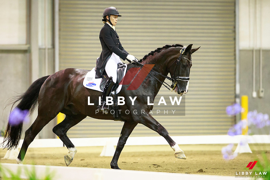 NZL-Wendi Williamson rides Dejavu MH in the Cartown Bates Championship Level 9 - FEI CDIW Grand Prix Musical Freestyle. FINAL-1ST. 2017 NZL-Bates NZ Dressage Championships. Manfeild Park, Feilding. Saturday 4 February. Copyright Photo: Libby Law Photography