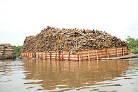 Asia Pulp and Paper is the world's largest pulp and paper producer. The logging and timber plantation company actively clear cuts rain forests in Sumatra, Borneo, and Papua with environmental ans social impacts. This Indah Kiat paper mill owned by Asia Pulp and Paper is located in Riau, Sumatra, and processes natural rain forest and plantation grown timber into paper and paper pulp for international export.