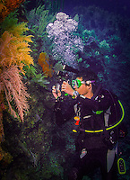9 June 2015: SCUBA Diver Josh Wolfstein captures digital images with a GoPro setup on the coral reef at Spanish Bay Reef, on the North Shore of Grand Cayman Island. Located in the British West Indies in the Caribbean, the Cayman Islands are renowned for excellent scuba diving, snorkeling, beaches and banking.  Mandatory Credit: Ed Wolfstein Photo *** RAW (NEF) Image File Available ***