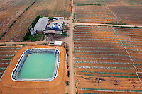A typical farm in the Wuming area, with rows of vegetables growing and an irrigation pool. /Felix Features