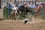 A saddle bronc jumps over the cowboy he just bucked off at the Jordan Valley Big Loop Rodeo, Ore.