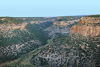 Spruce Canyon, Mesa Verde National Park, Montezuma County, Colorado, USA. Mesa Verde is the largest archaeological site in America, with Native Americans inhabiting the area from 7500 BC to 13th century AD. It is listed as a UNESCO World Heritage Site. Picture by Manuel Cohen