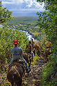 Molokai Mule Ride tour to Kalaupapa National Historic Park; Molokai, Hawaii.