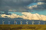 Wind turbines, wind farm, south central Wyoming