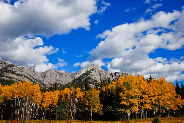 Autumn at Banff