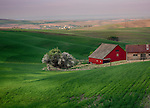 Idaho, North Central, Latah County, Moscow. A red barn on the Idaho Palouse in spring.