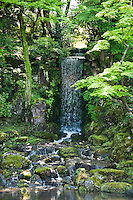 Japanese Gardens - Open Edition Fine Art Photographic Prints