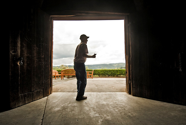 Angelo Regusci, born 1926, (age 85?) at door to winery now run by his son Jim, jr.  angelo and his father made homemade wine here until opened for commercial sales about 1992?