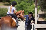 Windy Hill Equestrian